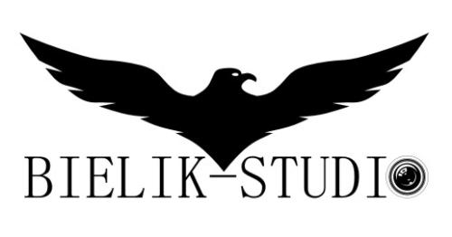 Bielik Studio
